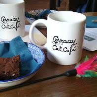 cat cafe2
